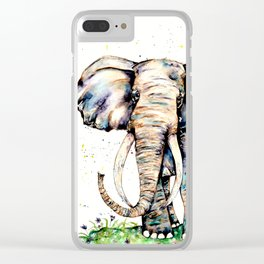 Magnificence Clear iPhone Case