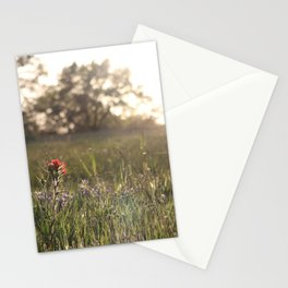 Saturday in Texas Stationery Cards