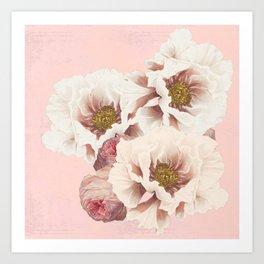Peonies and Roses Art Print