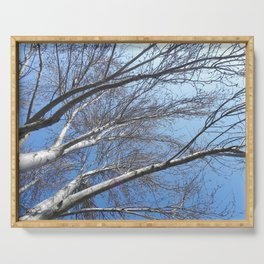 Blue sky through the trees Serving Tray