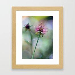 Gossamer Gleam Framed Art Print