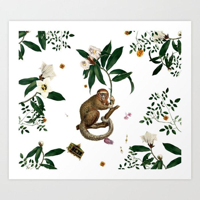 Monkey World: Amber-Ella - White Kunstdrucke