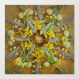 Nature Mandala: August Canvas Print