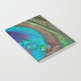 Peacock feather & water droplets Notebook