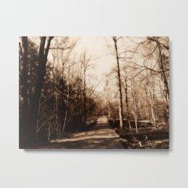 Lullwater Park Metal Print