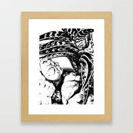 Cactus Enhanced Framed Art Print