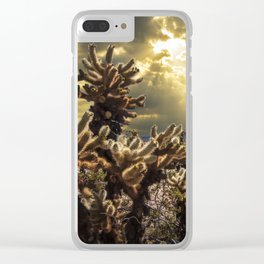 Cholla Cactus Garden bathed in Sunlight in Joshua Tree National Park California Clear iPhone Case