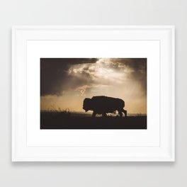 Bison in the Storm - Badlands National Park Framed Art Print