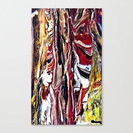 injuns Canvas Print