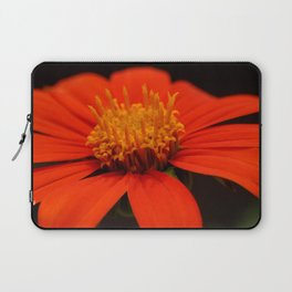 Red African Daisy Laptop Sleeve