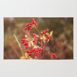 Rose Hip Photography Print Rug