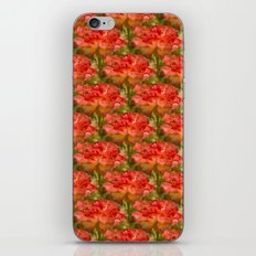 Roses Galore iPhone & iPod Skin