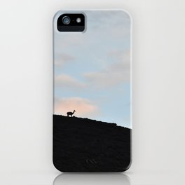 Guanaco Silhouette in Patagonia iPhone Case