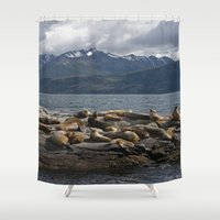 lions Shower Curtains featuring Sea Lions by lularound
