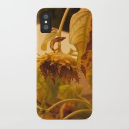 The Sun has Set and tomorrow, God willing, it will rise again [SUNFLOWER] [WILTING] [YELLOW SKY]  iPhone Case