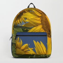 SUNFLOWERS 1 Backpack