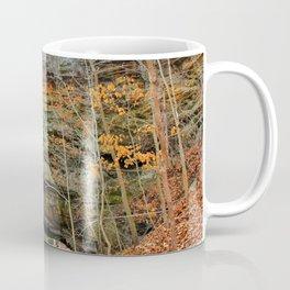 Natural bridge. Coffee Mug