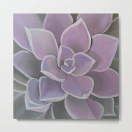 Lavender Succulent Metal Print