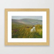 I see ewe on the Sally Gap Framed Art Print