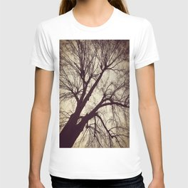 Looming Tree T-shirt
