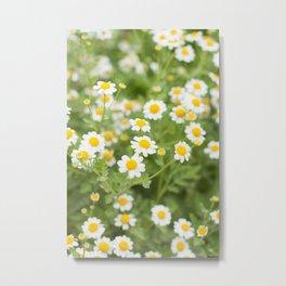 Sweet Flowers v. 3 Metal Print
