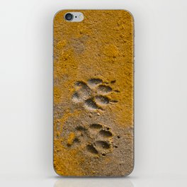 Paw Prints iPhone Skin