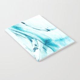 Glacier Notebook