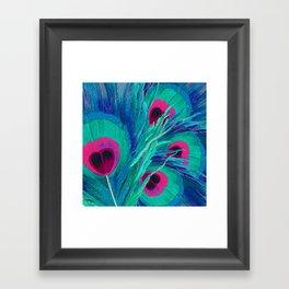 Peacocks Feathers Framed Art Print