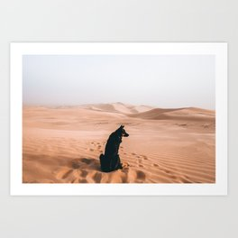 Find your way back home   Imperial Sand Dunes, California Art Print