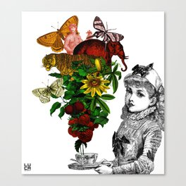 Exotic tea Canvas Print