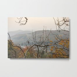 Fall lake view through the trees Metal Print
