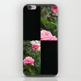 Pink Roses in Anzures 5  Blank Q2F0 iPhone Skin
