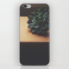 Succulent (2) iPhone & iPod Skin