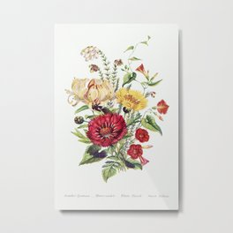 Scarlet Ipomoea, Honeysuckle, White Heath and Sweet Sulian from The Language of Flowers, or, Floral Metal Print