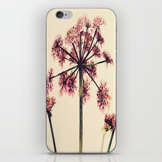 Cow Parsley iPhone & iPod Skin
