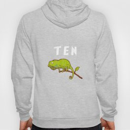 Kids 10 Year Old Lizard Reptile Birthday Party 10th Birthday Hoody