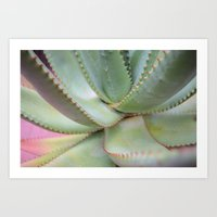 Spiked Plant Art Print