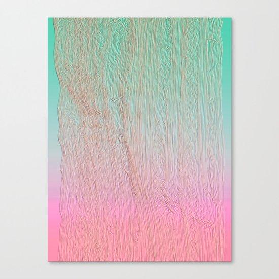 expw Canvas Print