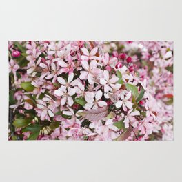 Apricot blossoms Rug