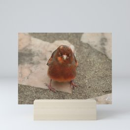 Cute runaway canary bird Mini Art Print