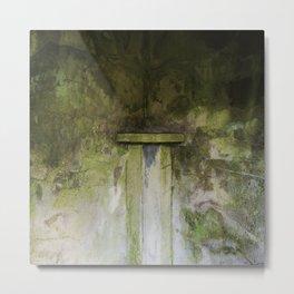 Garden Wall #1 - 2014 Metal Print