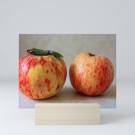Apple2 Mini Art Print