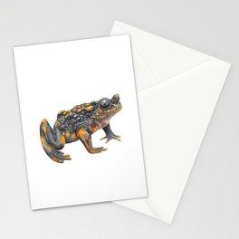 Sapito hermoso (Telmatobufo venustus) Stationery Cards