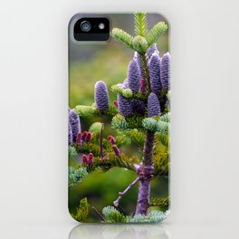 Top of Mt. Washington iPhone Case