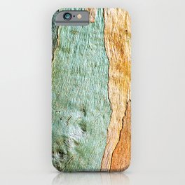 Eucalyptus Tree Bark Wood Abstract Colorful Texture Macro iPhone Case