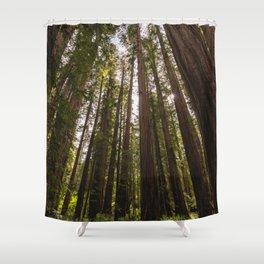 Among Giants II - 60/365 Shower Curtain