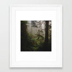 Foggy Forest Framed Art Print