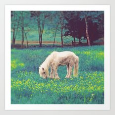 Horse in surreal field Art Print