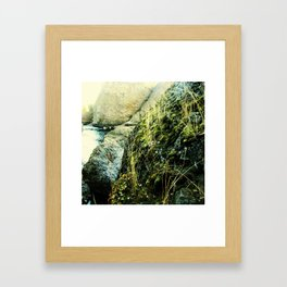Quiet Demise Series 03 Framed Art Print