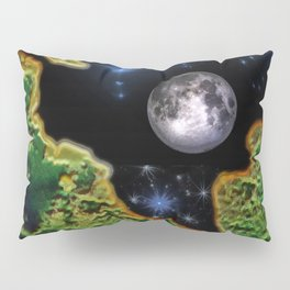 Cracked Earth Pillow Sham